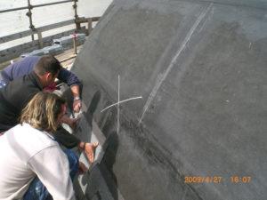 copertura industriale torino