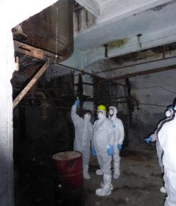 Consulenze ambientali su amianto