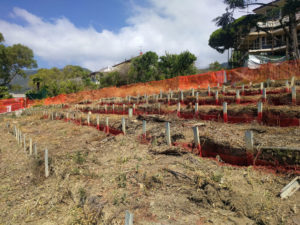 terreno con eternit liguria